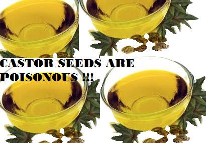 Poisonous castor oil