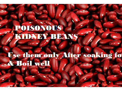 Hidden Poisonous Food In Our Kitchen